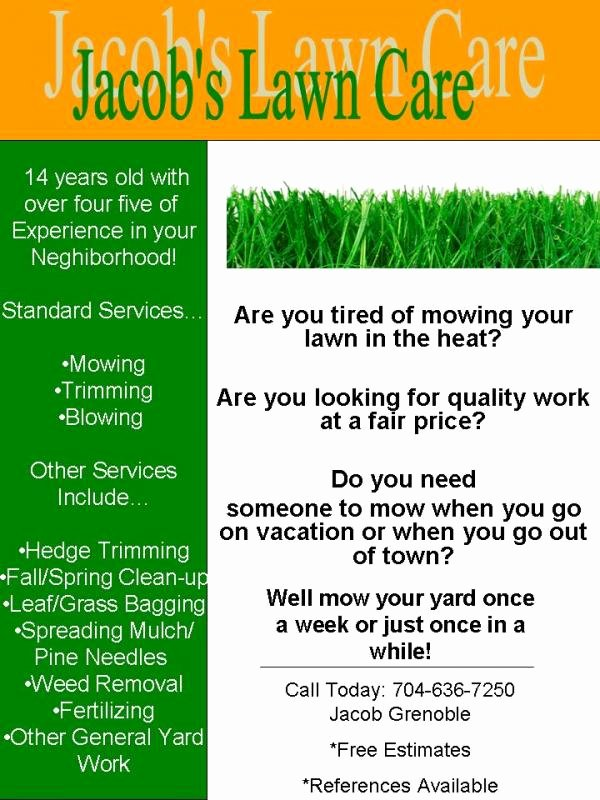 Lawn Care Flyer Template Fresh My Lawn Care Flyer What Do You Think