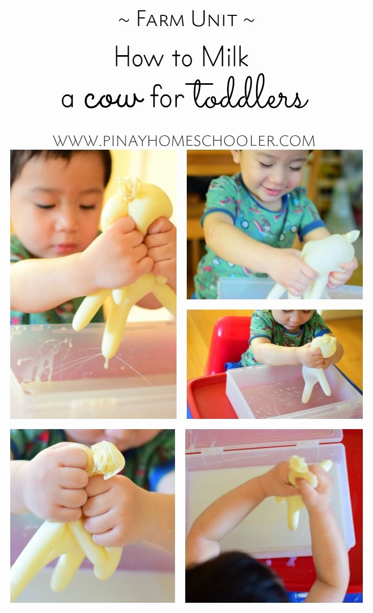 Lesson Plans for toddlers Fresh Milking A Cow for toddlers