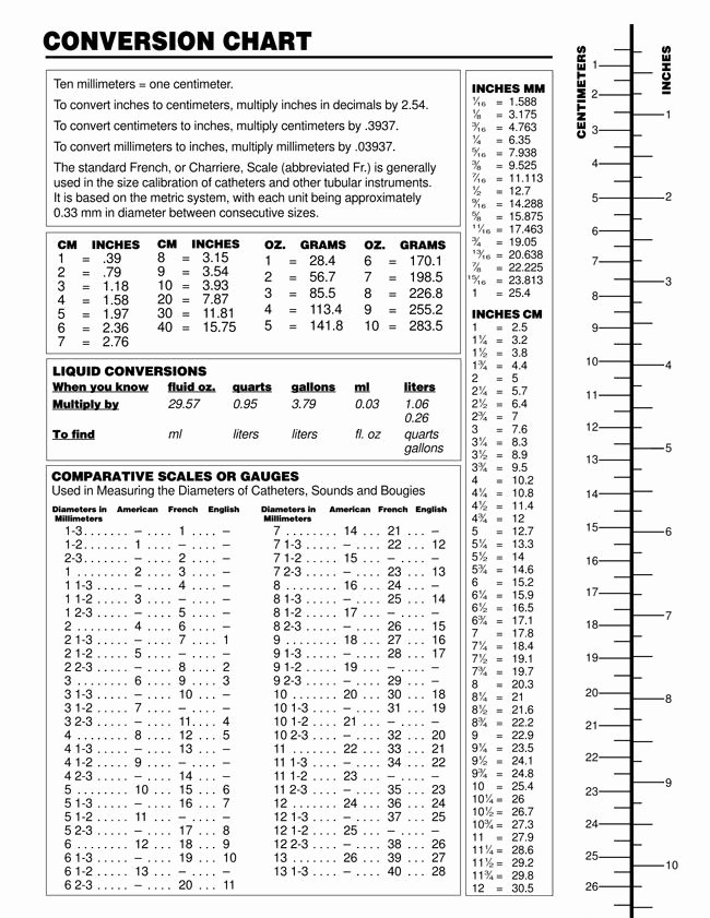 Liquid Measurement Conversion Chart Awesome Printable Liquid Measurement Conversion Charts with Guide