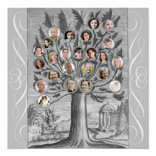 Make Your Own Family Tree Luxury Create Your Own Antique Style Family Tree Posters