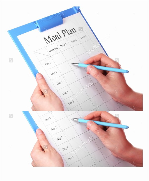 Meal Plan Template Word New Meal Plan Template 22 Free Word Pdf Psd Vector