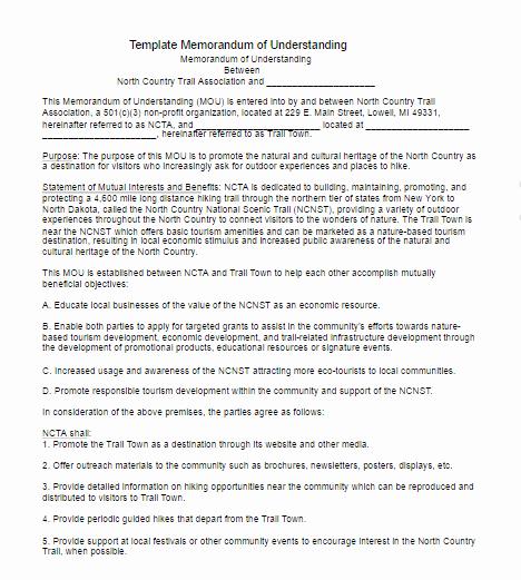 Memorandum Of Understanding Sample Inspirational Memorandum Understanding Template