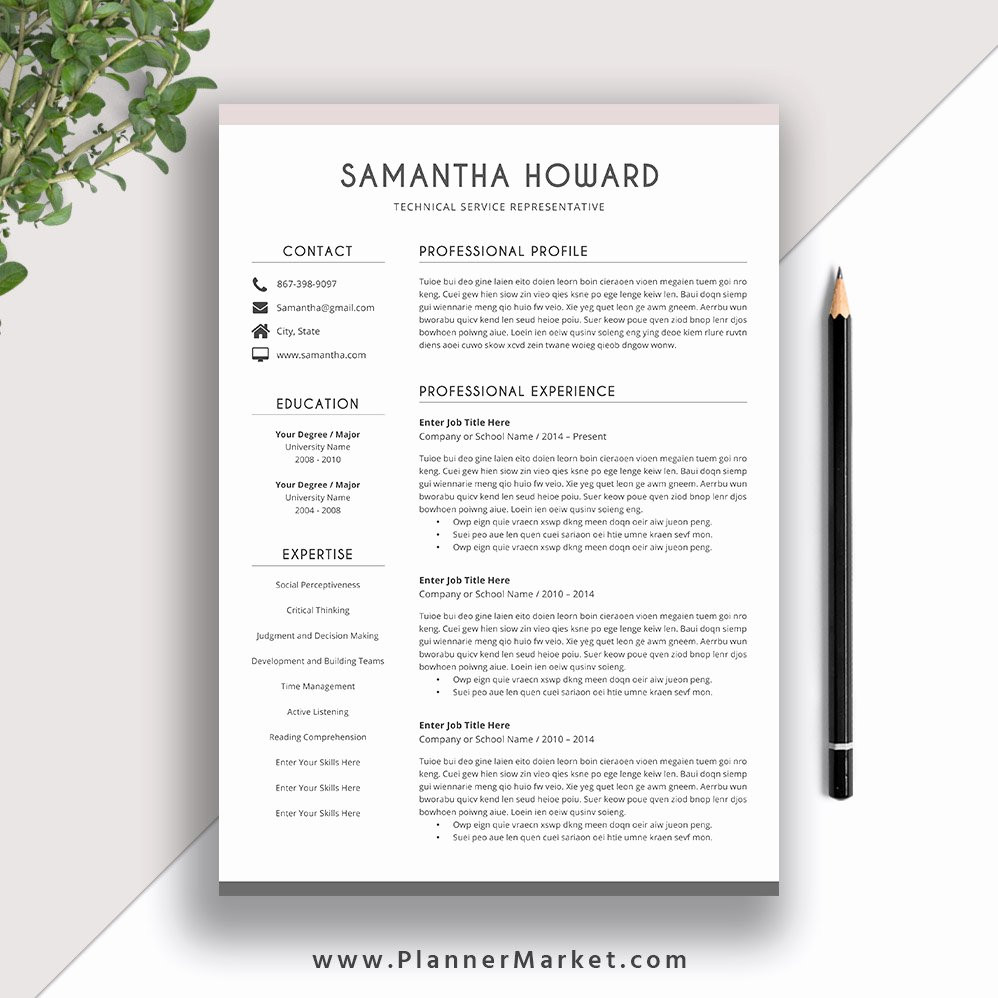 Modern Resume Template Word Best Of Clean Resume Template 2019 2020 Cover Letter Cv Template