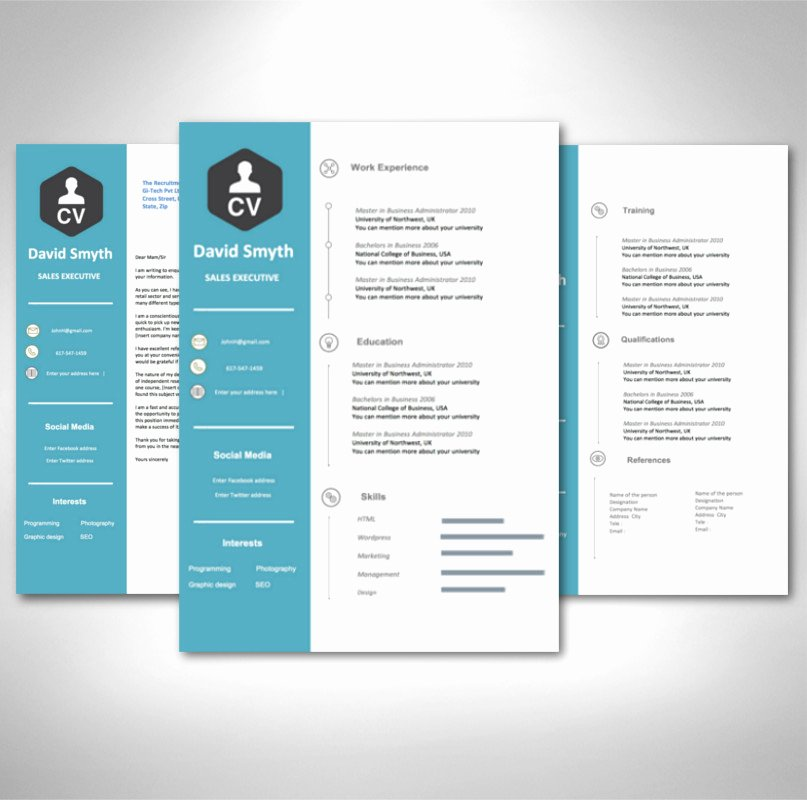Modern Resume Template Word Luxury Modern Cv Template for 2019