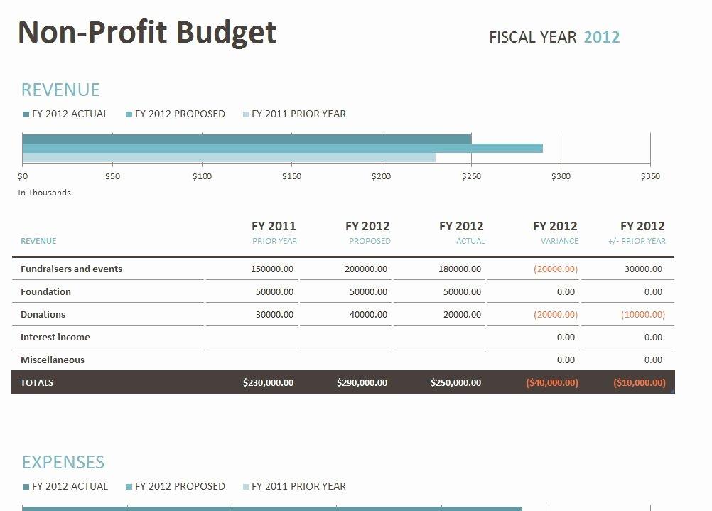Non Profit Budget Template New Non Profit Bud Template