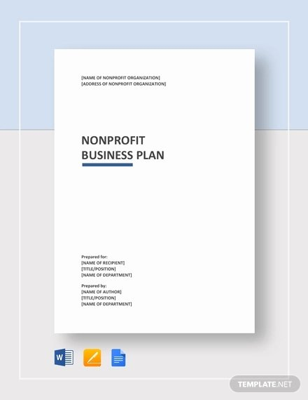 Non Profit Business Plan Best Of 8 Nonprofit Plan Examples Samples