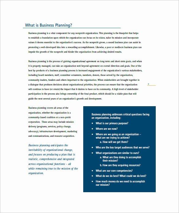 Non Profit Business Plan Elegant Non Profit Business Plan Template 8 Word Excel Pdf