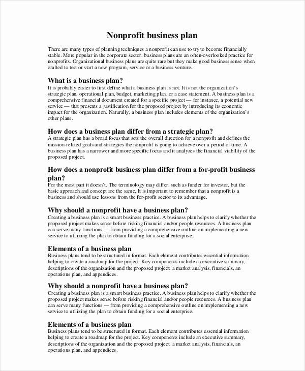 Non Profit Business Plan Fresh Non Profit Business Plan 14 Pdf Word Documents