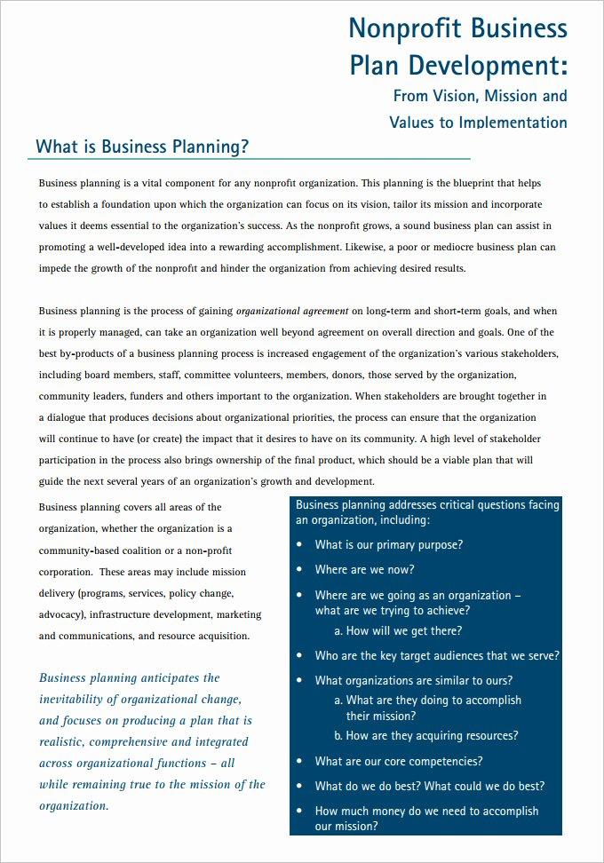 Non Profit Business Plan Luxury 22 Non Profit Business Plan Templates Pdf Doc