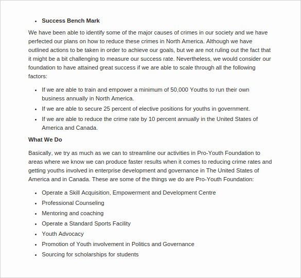 Non Profit Business Plan Unique Non Profit Business Plan Templates 15 Free Word Pdf