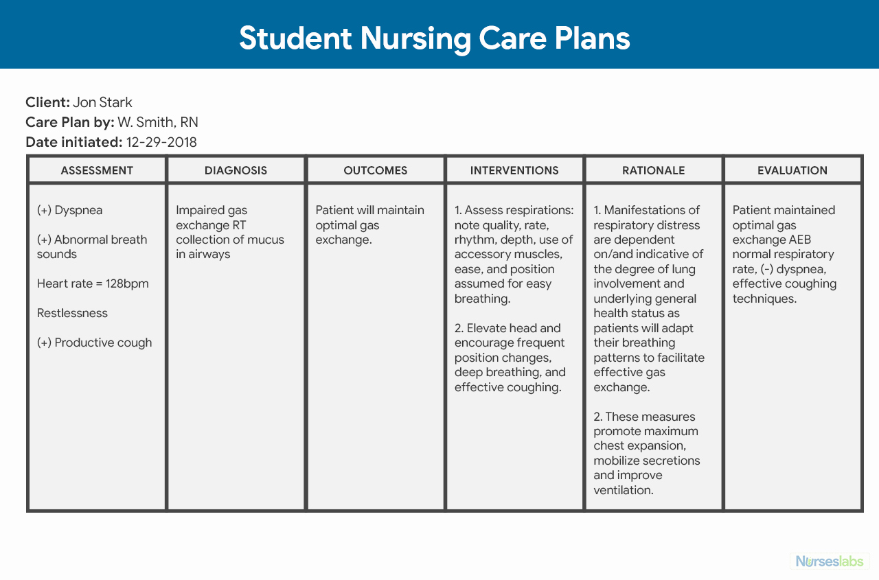 Nursing Care Plans Template Luxury Nursing Care Plan Ncp Ultimate Guide and Database