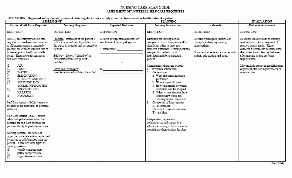 Nursing Care Plans Template New Free Printable Blank Nursing Care Plan