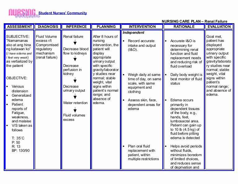 Nursing Care Plans Template New Nursing Crib Nursing Care Plan Renal Failure