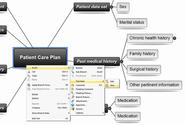 Nursing Concept Mapping Template Awesome 26 Of Nursing Diagnosis Concept Map Template
