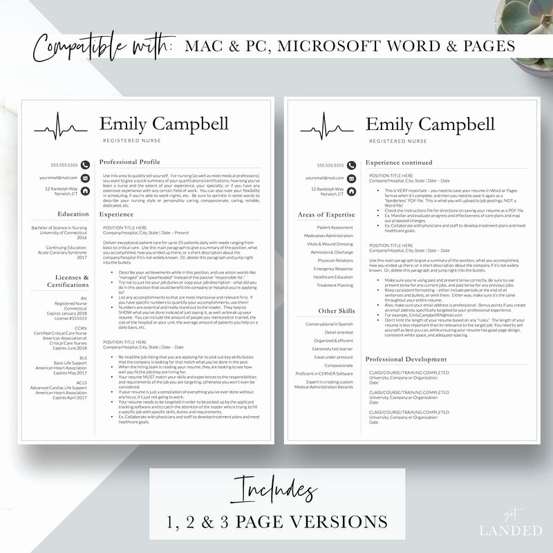 Nursing Student Resume Template New Nurse Resume Template Cv for Nursing Student Nursing