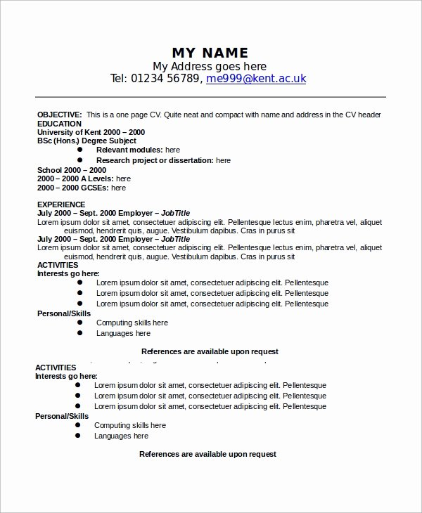 One Page Resume Examples Beautiful Sample E Page Resume 9 Examples In Word Pdf