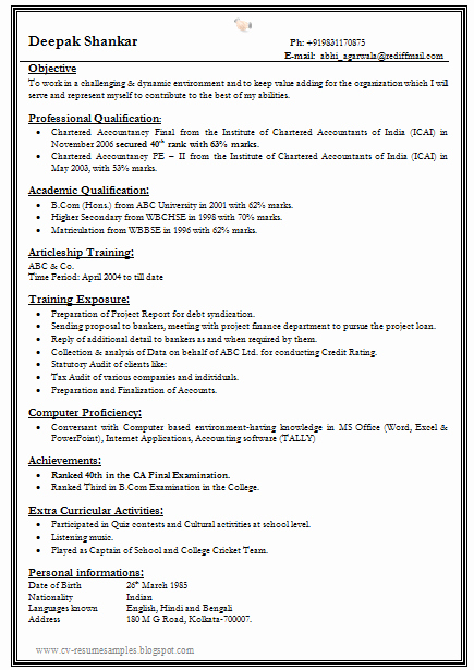 One Page Resume Examples Inspirational E Page Resume Template