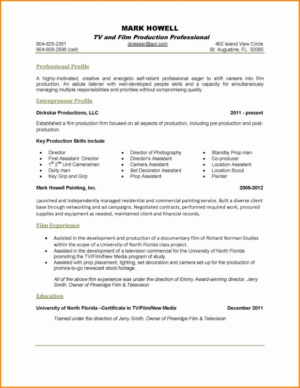 One Page Resume Examples New E Page Resume Examples
