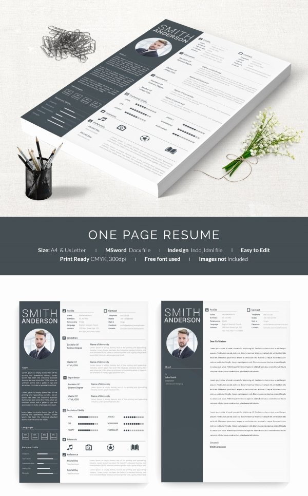One Page Resume Examples Unique 41 E Page Resume Templates Free Samples Examples
