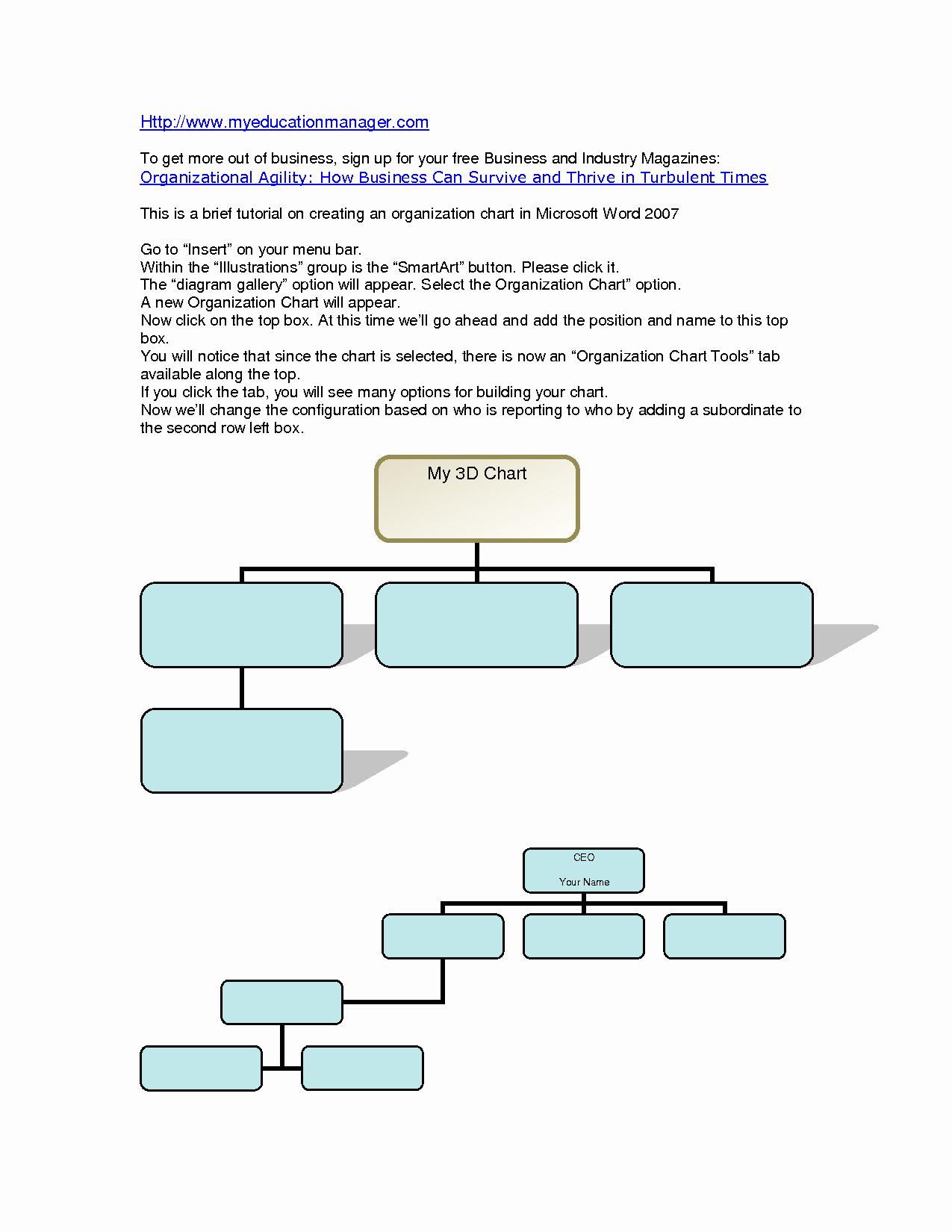 Org Chart Template Word Beautiful organizational Chart Template Word