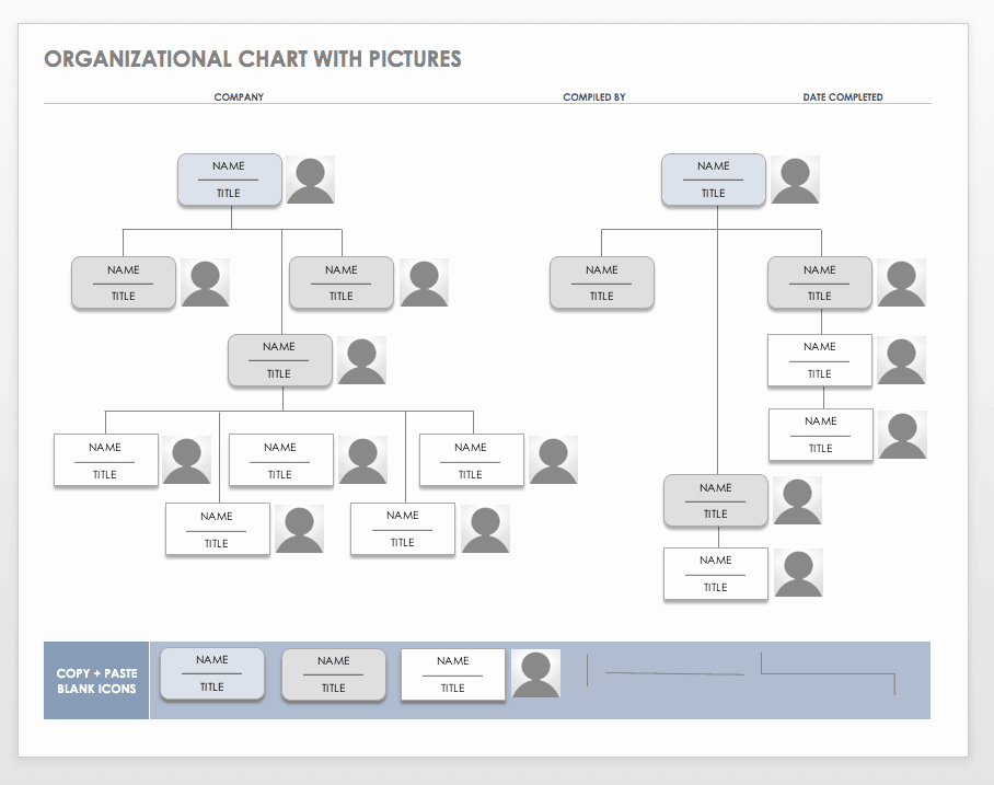 Org Chart Template Word Best Of Free organization Chart Templates for Word