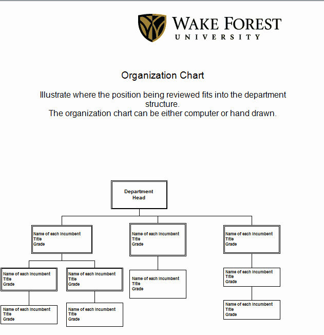 Org Chart Template Word Lovely 41 Free organization Chart Templates In Word Excel Pdf