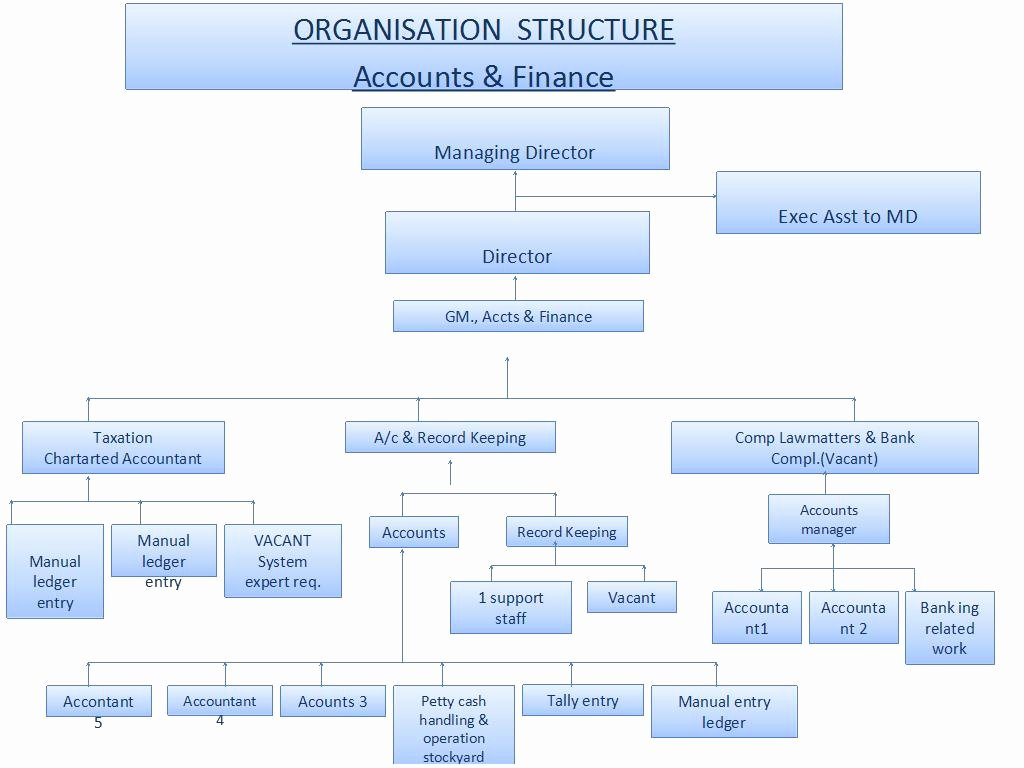 Org Chart Template Word Lovely organization Chart Ppt Template
