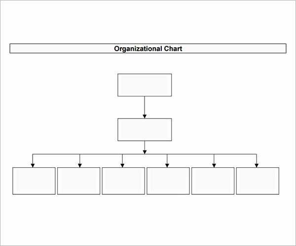 Organizational Chart Template Free Awesome 10 organizational Chart Template Download Free