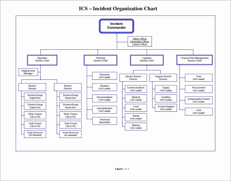 Organizational Chart Template Free Awesome 8 Microsoft Excel organizational Chart Template