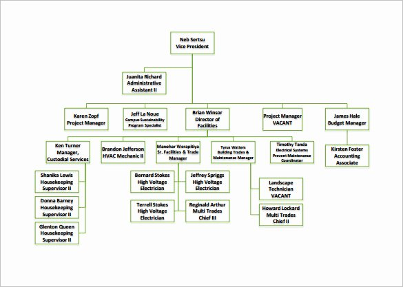 Organizational Chart Template Free Beautiful organizational Chart Template – 9 Free Sample Example