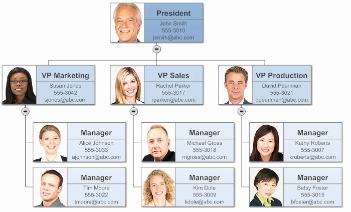 Organizational Chart Template Free Luxury Make organizational Charts In Word with Templates From
