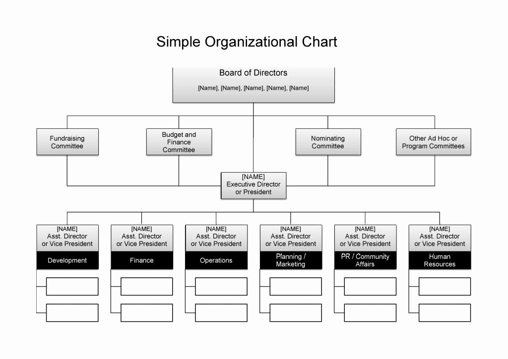 Organizational Chart Template Word Best Of 25 Best Free organizational Chart Template In Word Pdf Excel