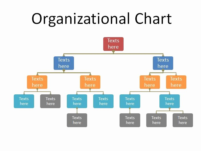 Organizational Chart Template Word Lovely 40 Free organizational Chart Templates Word Excel