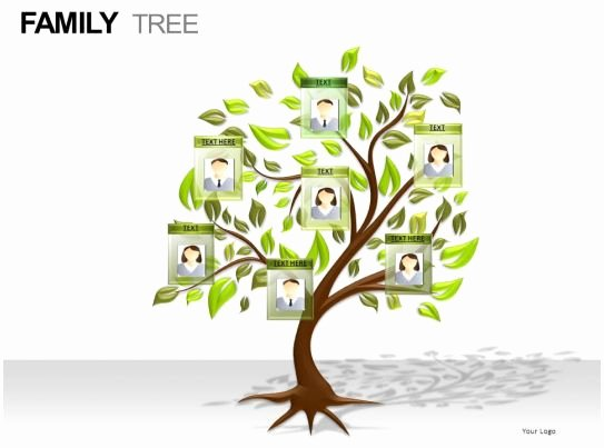 Powerpoint Family Tree Template Best Of Family Tree Powerpoint Presentation Slides