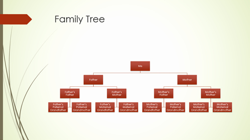 Powerpoint Family Tree Template Lovely Family Tree Chart Vertical Green Red Widescreen