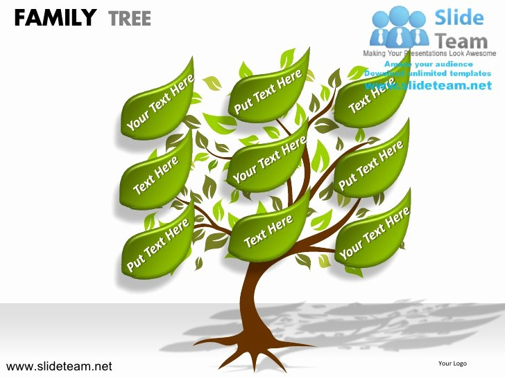 Powerpoint Family Tree Template Luxury How to Make Create Geneology Family Tree Powerpoint