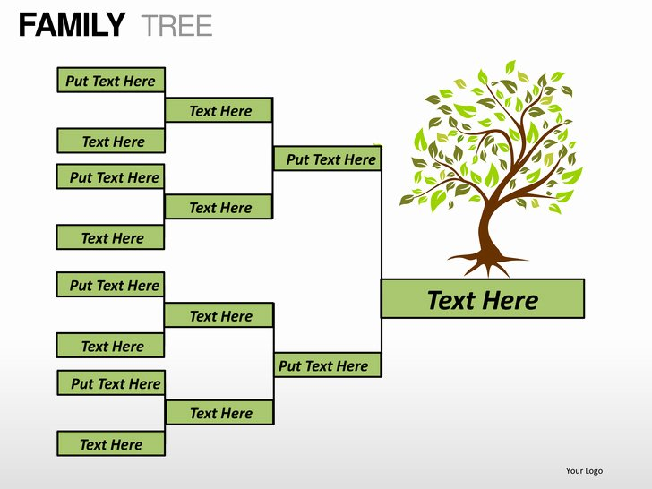 Powerpoint Family Tree Template Unique Family Tree Powerpoint Presentation Templates