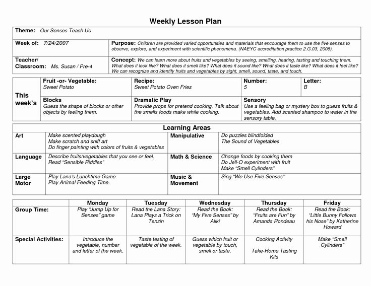 Pre Kindergarten Lesson Plan Template Elegant Naeyc Lesson Plan Template for Preschool