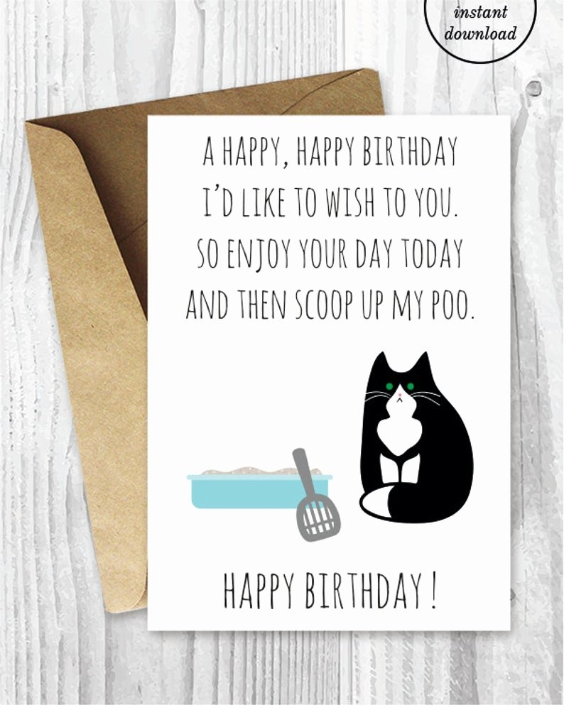 Printable Funny Birthday Cards Awesome Printable Funny Birthday Cards Black and White Cat Cards