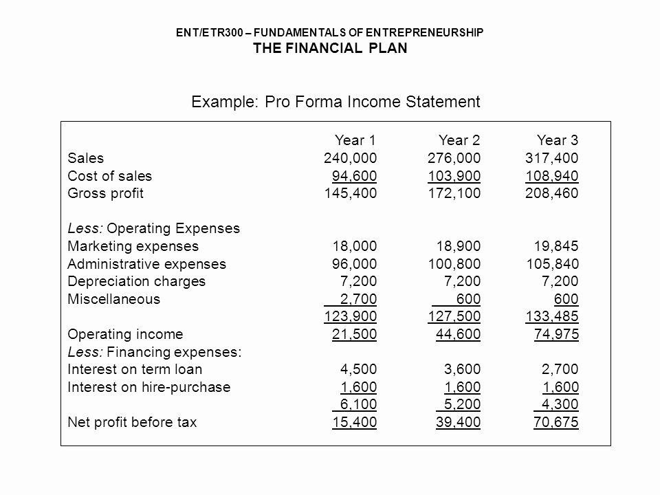 Pro forma Income Statement Example Unique Financial Plan assoc Prof Dr ismail Ab Wahab Ppt