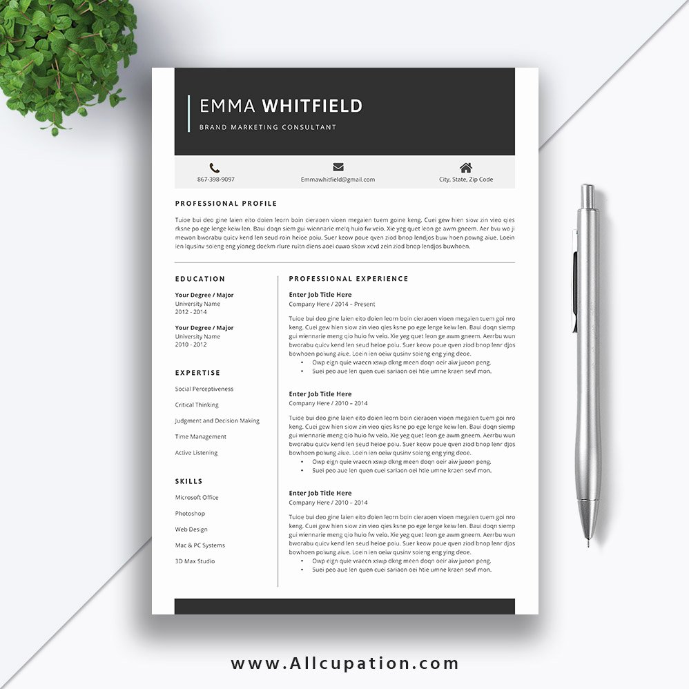 Professional Resume Template Word Beautiful Resume Templates for Job Application Creative and