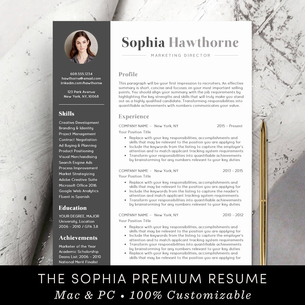 Professional Resume Template Word Best Of Professional Resume Template with Modern Cv Word