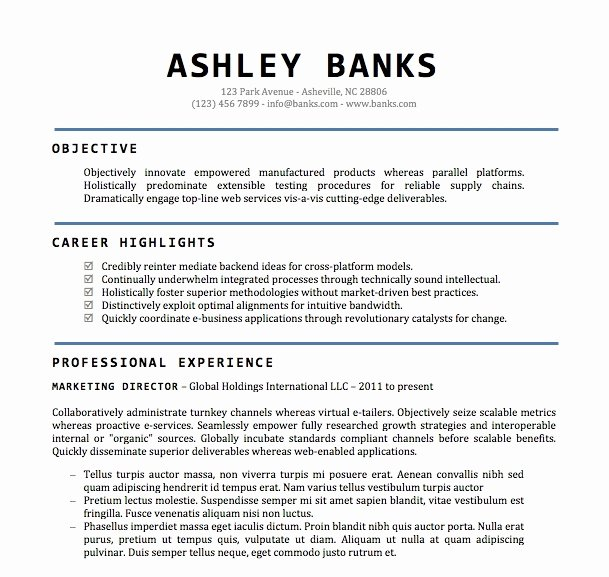 Professional Resume Template Word Fresh Professional Resume Templates Microsoft Word