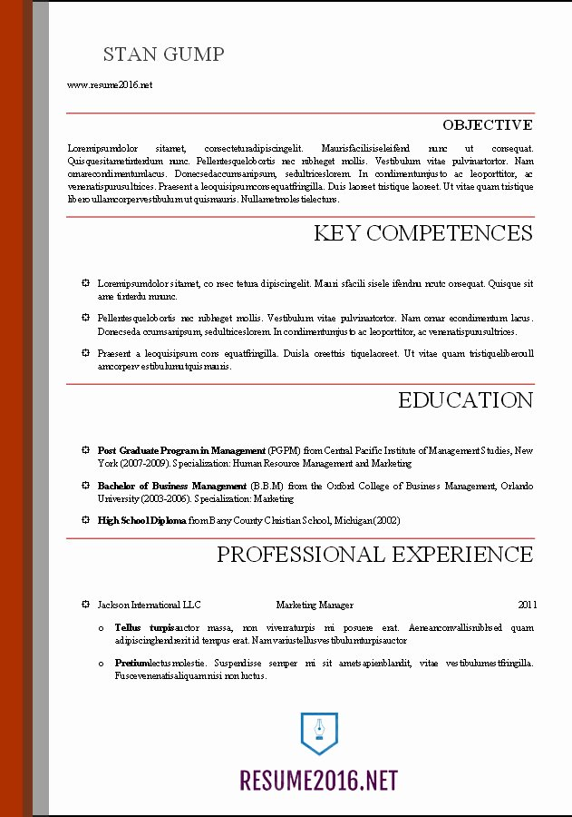 Professional Resume Template Word Lovely Word Resume Templates 2016