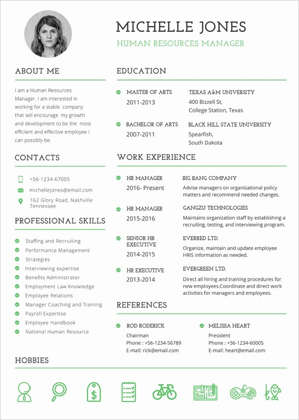 Professional Resume Template Word Luxury 37 Resume Template Word Excel Pdf Psd
