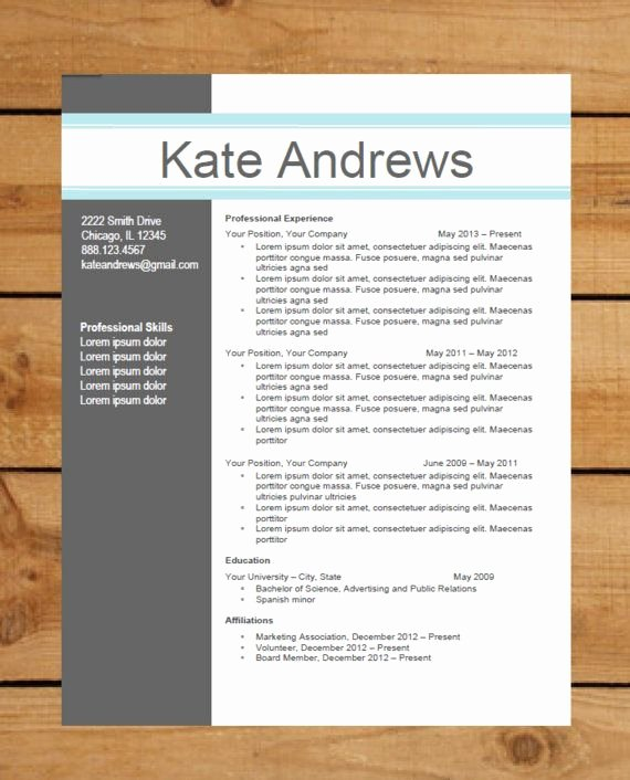 Professional Resume Template Word Luxury Resume Template Instant Word Document Download
