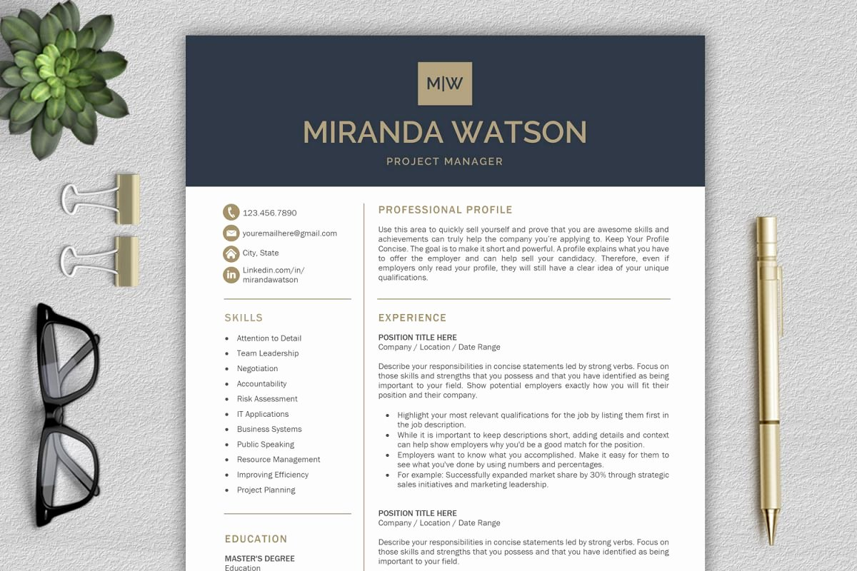 Professional Resume Template Word Unique Resume Template for Word Cv Template Professional Resume
