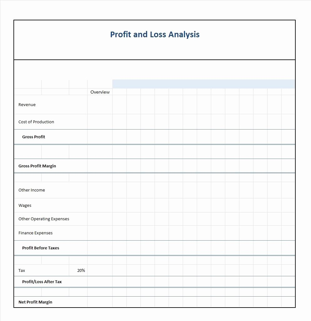 Profit Loss Statement Example Inspirational 35 Profit and Loss Statement Templates & forms