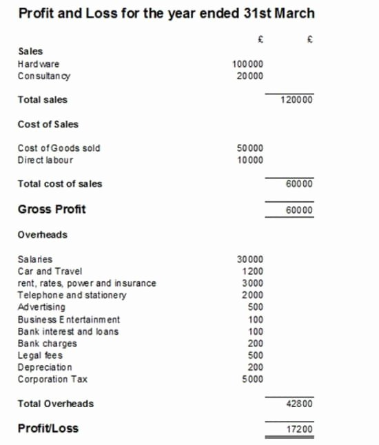 Profit Loss Statement Example Luxury Profit and Loss Statement with Example and Template
