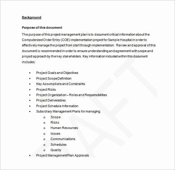 Project Management Plan Example Fresh Project Management Plan Template 12 Free Word Pdf